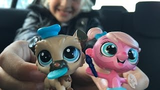 Мои новые Петшопы обзор игрушек видео для детей детский канал Леночки Littlest Pet Shop Toys  lps(детский канал Леночки представляет видео для детей: Мои новые Петшопы видео для детей канал Леночки Littlest..., 2016-10-18T14:01:40.000Z)