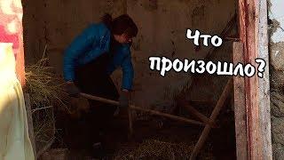 ВЛОГ: Случилась беда / Перенервничала