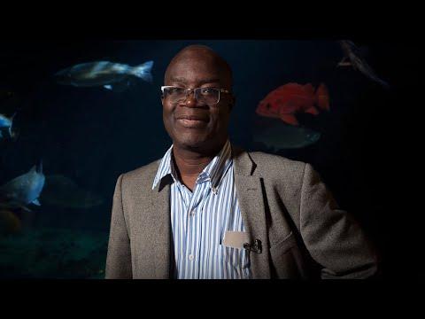 Rashid Sumaila – Volvo Environment Prize 2017 – Trailer