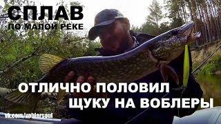 Сплав. Ловля щуки на воблер. Твичинг на малой реке. Рыбалка 2017.