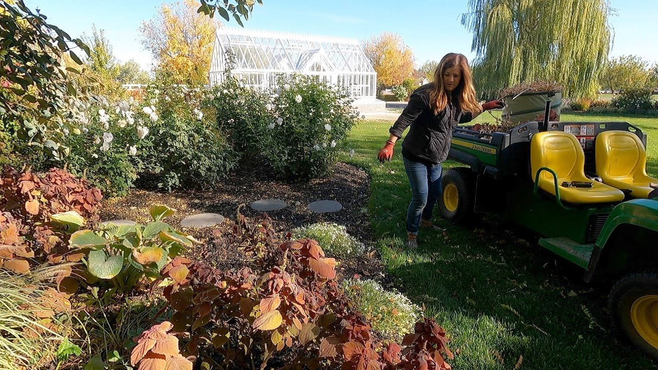 Download Starting Fall Flower Bed Cleanup! 🌾🍂🥀 // Garden Answer