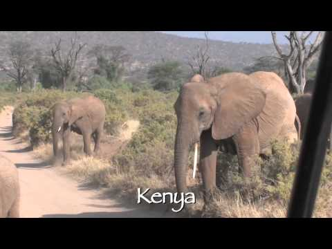 Totally Epic East African Safari With Cheeseman