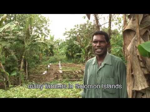 Our Seeds: our one hour documentary with English subtitles