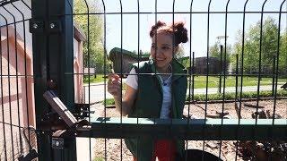 «Работа под прикрытием». Кипер в зоопарке (25.05.2018)