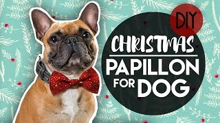CHRISTMAS EASY BOW TIE FOR DOG COLLAR - PAPILLON FARFALLINO PER CANE NATALE