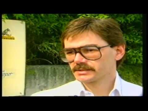 1989 Elitloppet - Elitlopp - Napoletano