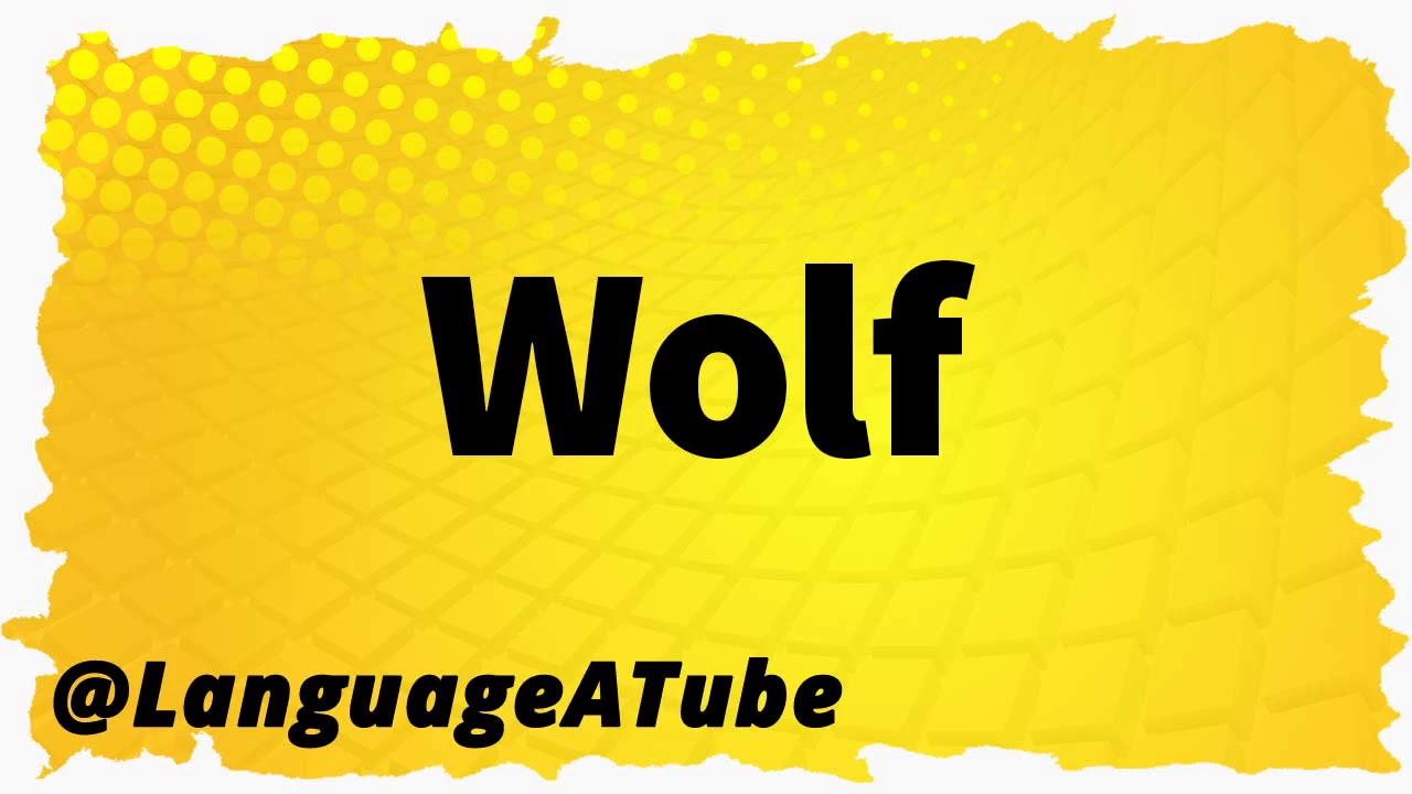 Wolf Pronunciation ⚡️ How To Pronounce Wolf!