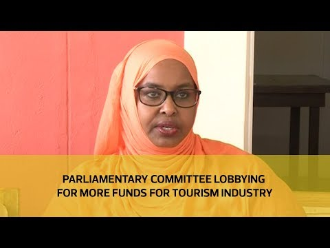 Parliamentary committee lobbying for more funds for tourism industry