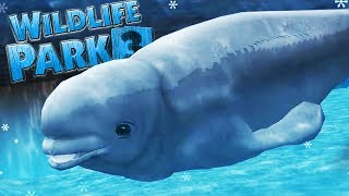 BEAUTIFUL BELUGAS 💗  | Wildlife Park 3 : Alaska - Part 2