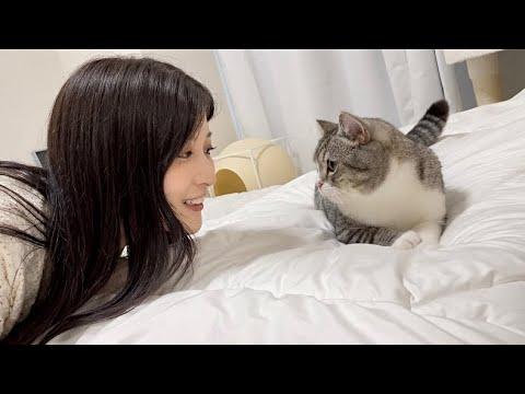 初めて美女が遊びに来たら雄猫がとんでもないことになりました笑