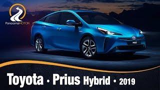 Toyota Prius Hybrid 2019 | Información Review Español