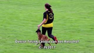 WC FCI 2017 Dutchteam
