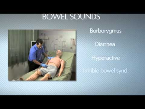 HAL® S3201 - Part 9 - Bowel sounds