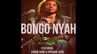 Stephen Marley - Bongo Nyah (June 2013)