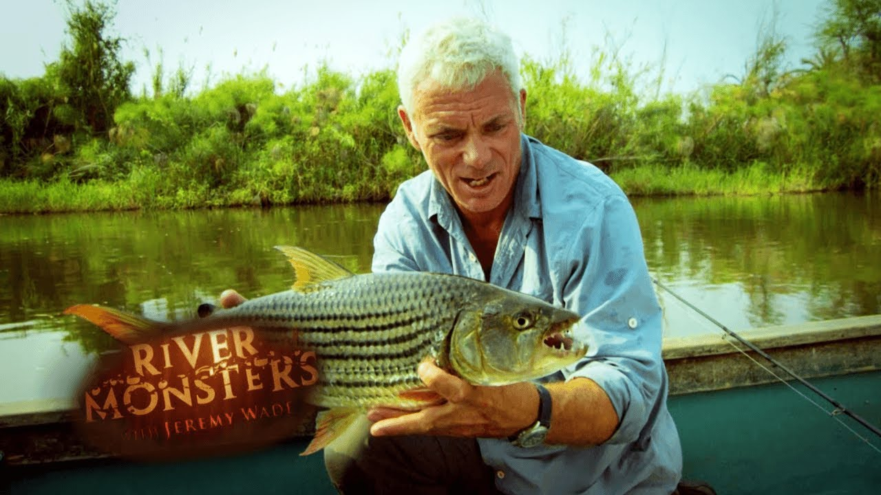 Catching A Killer Tigerfish   SPECIAL EPISODE   River Monsters