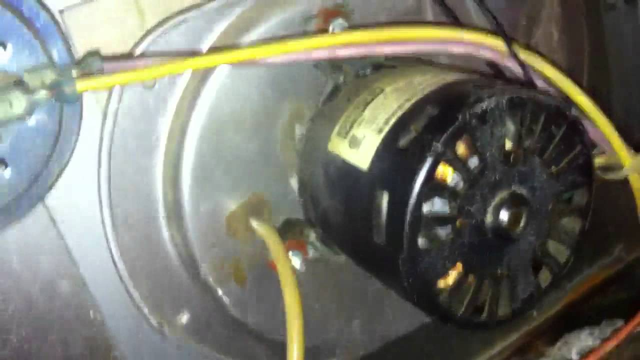 Ducane Gas Furnace At My Mom U0026 39 S Shop