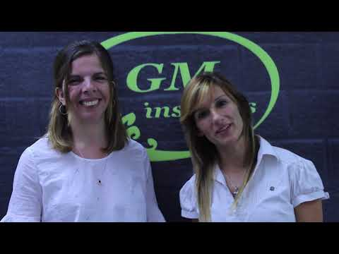 GM Computación/GM Insumos
