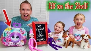 Elf on the Shelf! Elf Pets and Scruff a Luvs Toy Rescue!!!