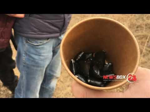 Житель Арсеньева попался Уссурийским полицейским с 20 пакетиками синтетитки