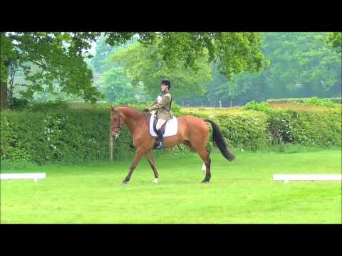 DHI Du Rouet ~ Dressage BE106 ~ Solihull UA