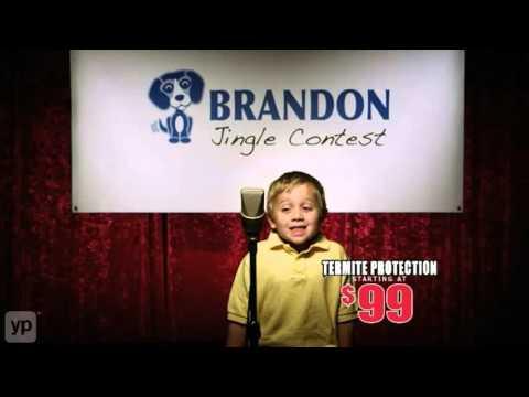 Brandon Pest Control   Jacksonville, FL   Termite & Bed Bug