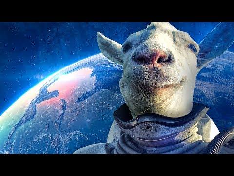 КАК скачать симулятор козла бесплатно на андроид  и ios