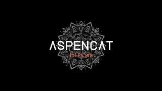 ASPENCAT - Mantindre el foc (amb Rootsman I de Train To Roots)
