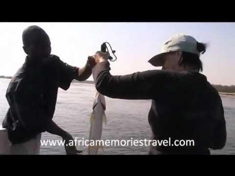 Tiger Fishing, Zambezi River, Lower Zambezi Valley