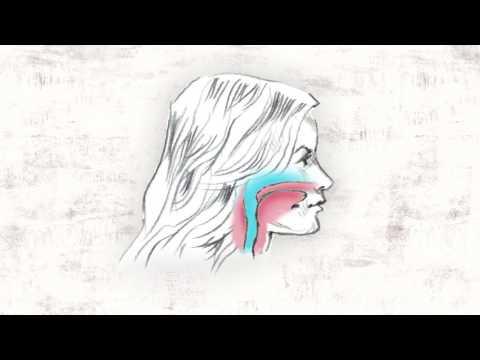The Story of Headgear