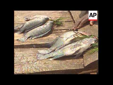 Uganda - Weed Threatens Lake Victoria