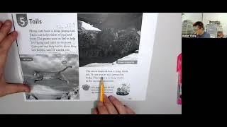 Publication Date: 2021-06-10 | Video Title: Tails