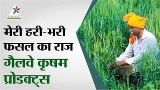 glaze krishi jagriti book pdf in hindi Mp4 HD Video WapWon