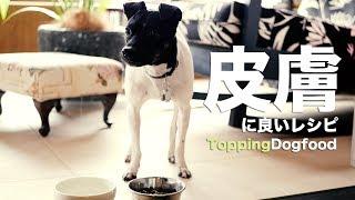 今日はハク(日本テリア)のトッピングご飯。犬の皮膚にいい人参とパプ...