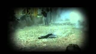 Hamada Helal - Ya Rab | حمادة هلال - يا رب 2017 Video