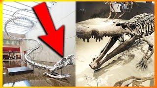 10 Gigantiske Forhistoriske Væsner