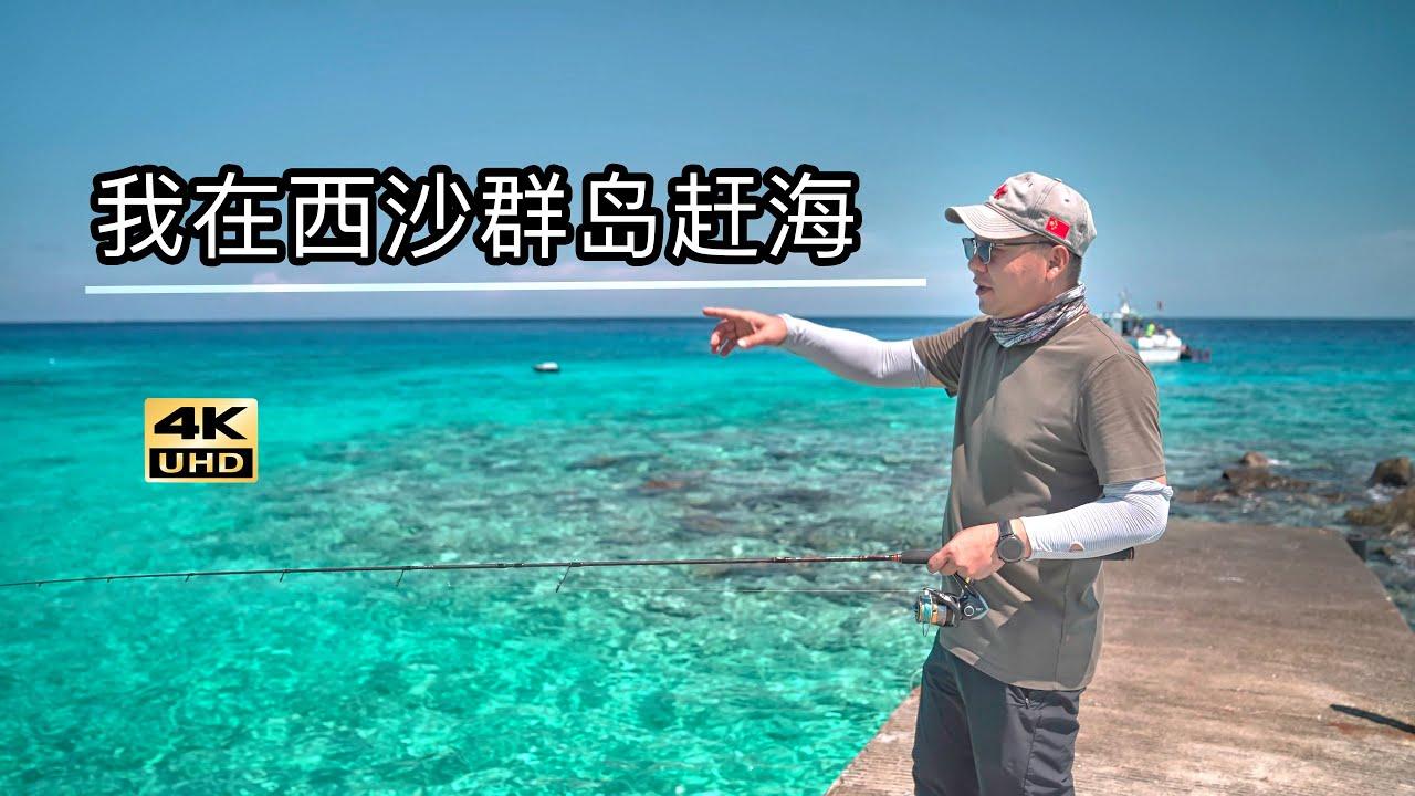 中国西沙群岛鱼太多,渔民直接下海捞鱼,大别墅住一年只要1块钱