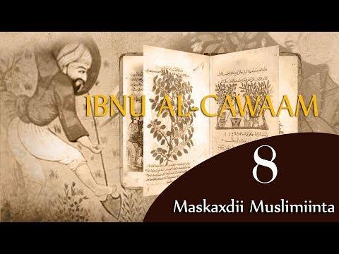 IBNU AL-CAWAAM┇KHABIIRKII MUSLIMKA AHAA EE DHANKA BEERAHA