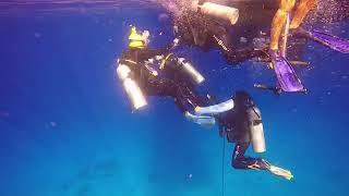 이집트 후루가다 홍해(Furugada Red Sea, …