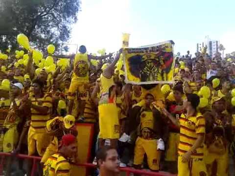 Torcida Jovem – Nautico 0 x0 Sport .mp4