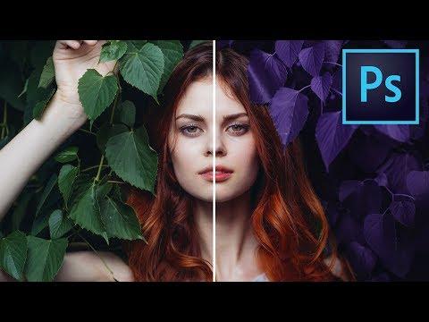 Come Selezionare E Cambiare Il Colore In Photoshop