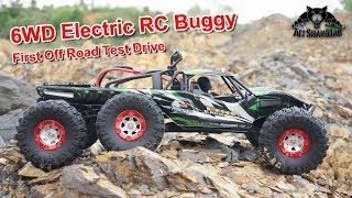 6WD Electric RC Sand Rail Go off Road make new Roads
