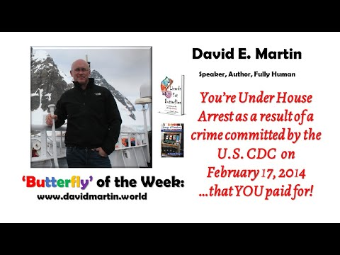 butterfly-of-the-week,-27-april-2020:-under-house-arrest-as-a-result-of-a-crime-committed-by-the-cdc