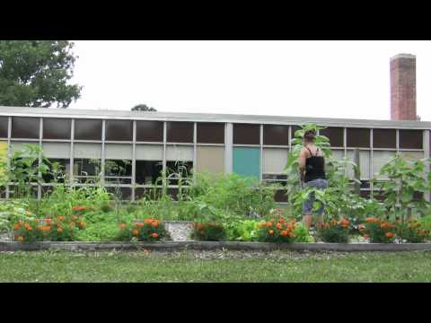 The Food Systems Project:  School Garden-Based Nutrition Education Program