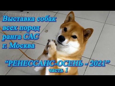 Москва. Октябрь 2021. ТРЦ \
