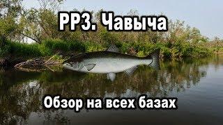 Русская Рыбалка 3. Чавыча. Обзор на всех базах.