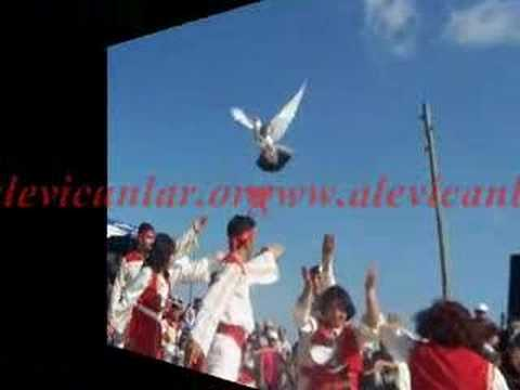 www.alevicanlar.org