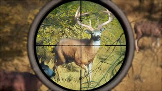 Hunting HUGE Whitetail DEER and TROPHY Elk in Hunter: Call Of The Wild