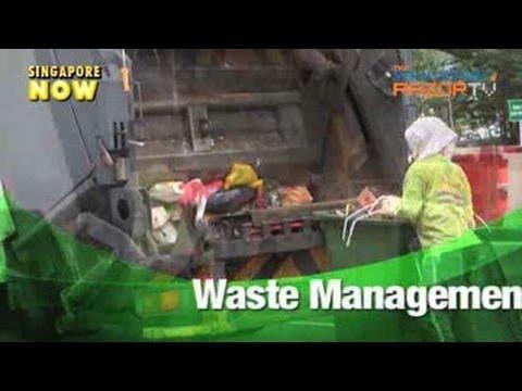 Cockroach-free dumpster? (Semakau Landfill Pt 4)