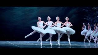 Pas de quatre from Swan Lake (Лебединое озеро - Танец маленьких лебедей 06.09)