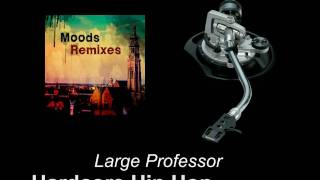 Large Professor - Hardcore Hip Hop (Moods Remix)